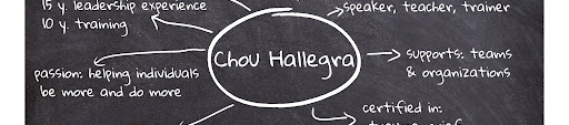 Chou Hallegra's cover banner