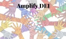 Amplify DEI - Level II